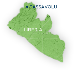 Fassavolu map